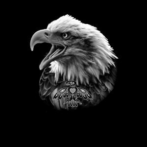 Eagle Haida Head