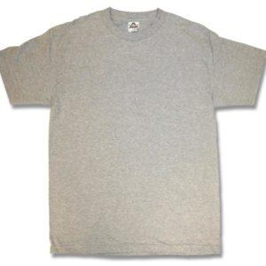 Sports Grey Adult T-Shirts